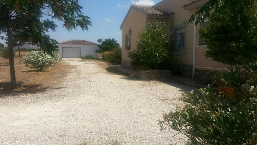 Bild 5: Klasse Villa mit Salzwasser-Pool