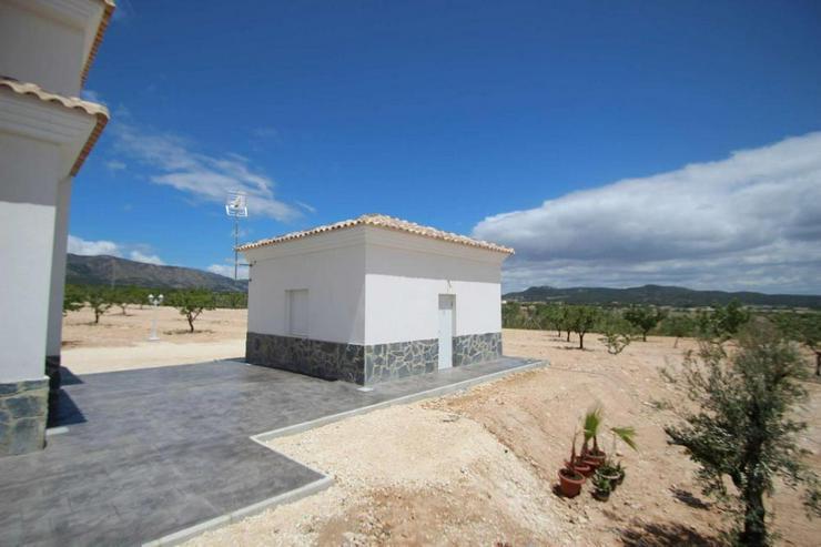 Bild 3: Baugleiche Villa, verschieden Grundstücke zur Wahl