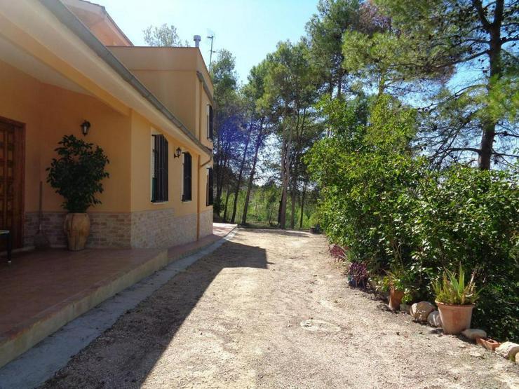 Bild 4: Herrliche Villa