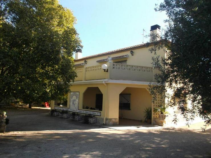 Bild 3: Charmante Villa in Ortsrand Lage
