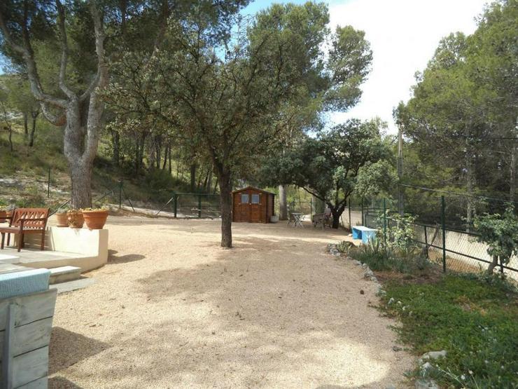 Bild 5: Helle, freundliche Villa, sehr naturnah