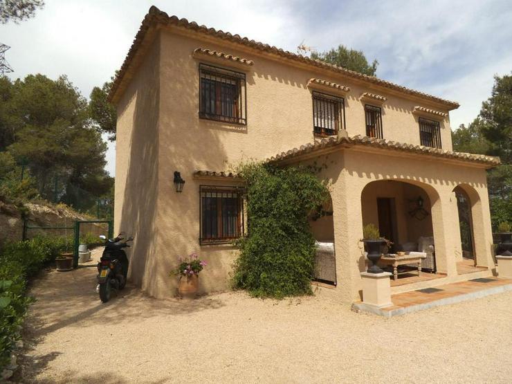Helle, freundliche Villa, sehr naturnah - Haus kaufen - Bild 1