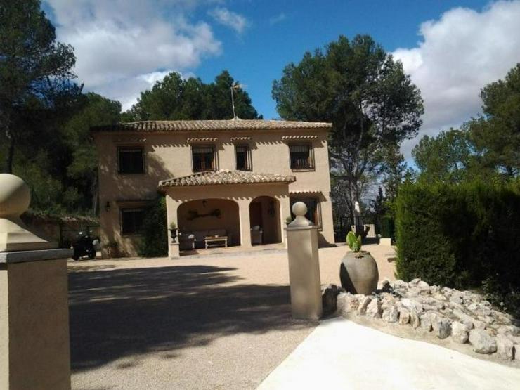 Bild 2: Helle, freundliche Villa, sehr naturnah