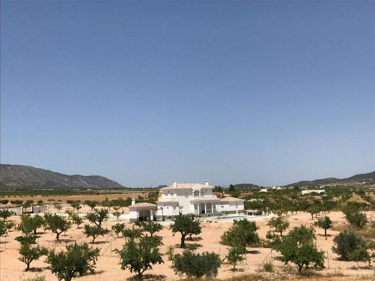 Bild 2: Neubau Projekt auf 10.000m² Land