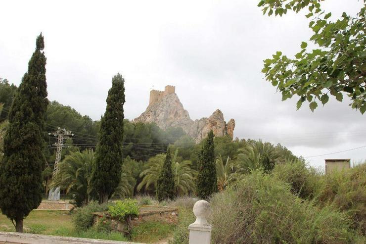 Bild 2: Schön bewachsenes Grundstück, Blick auf die Burg