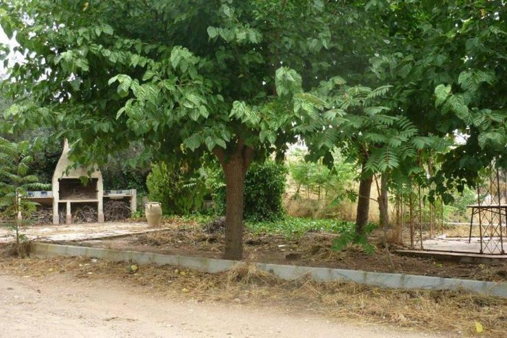 Bild 4: Landhaus zwischen Monovar und Pinoso