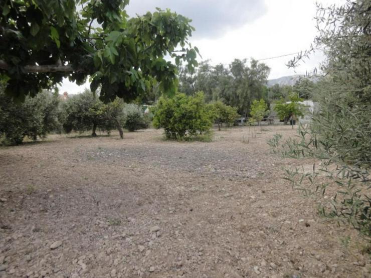 Bild 6: Casa de Campo