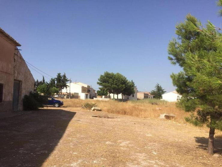 Bild 3: Riesiges Haus am Dorfrand mit endlosem Potenzial