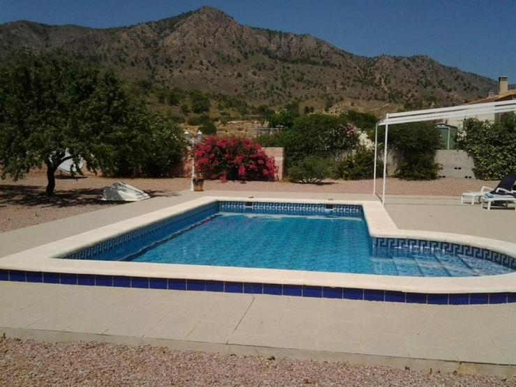 Bild 3: Landhaus mit Pool in kleinem Vorort