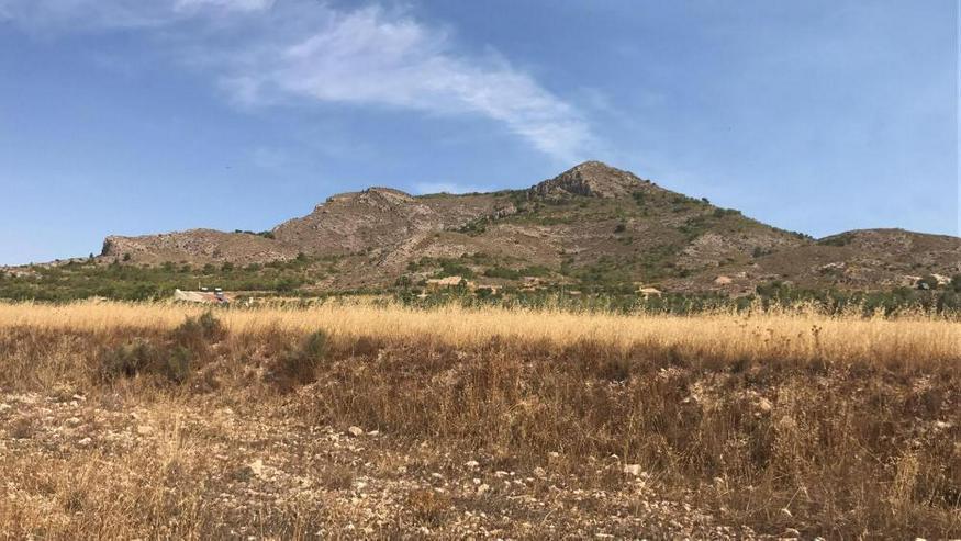 Bauland - Bild 1
