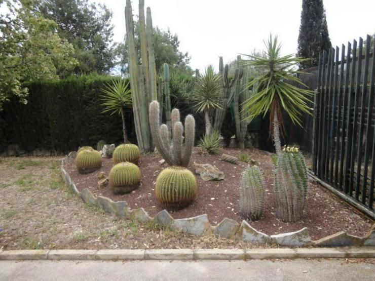 Bild 6: Landhaus bei Pinoso