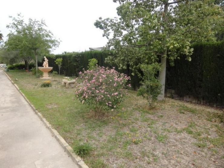 Bild 5: Landhaus bei Pinoso