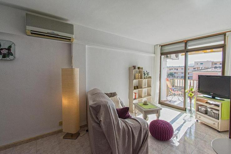 Bild 2: Paguera - Gemütliche Wohnung mit Meerblick