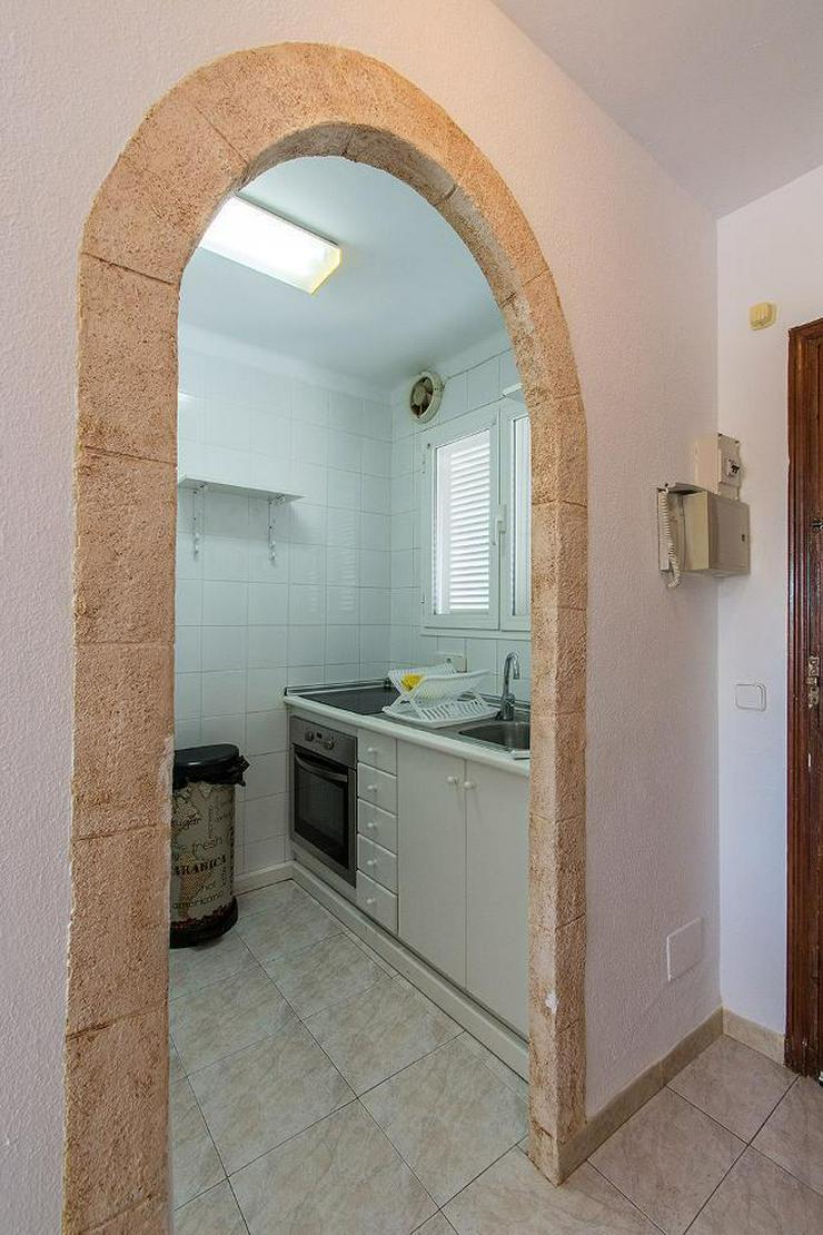 Bild 4: Paguera - Gemütliche Wohnung mit Meerblick