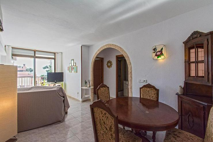 Bild 3: Paguera - Gemütliche Wohnung mit Meerblick