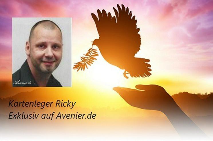 Kartenleger Ricky - Kartenlegen, Reiki, Tarot - Lebenshilfe - Bild 1