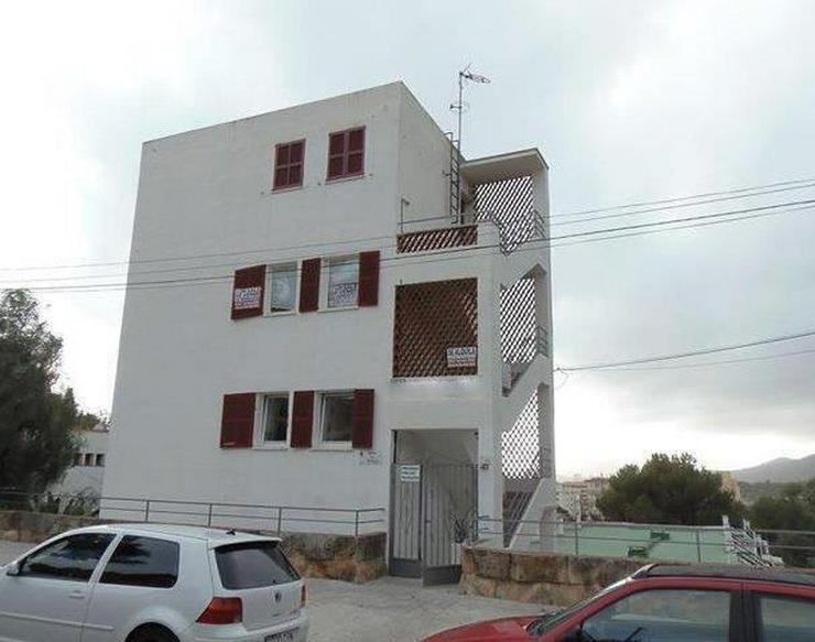 KAUF: renoviertes Apartment mit 1 Schlafzimmer - Auslandsimmobilien - Bild 1