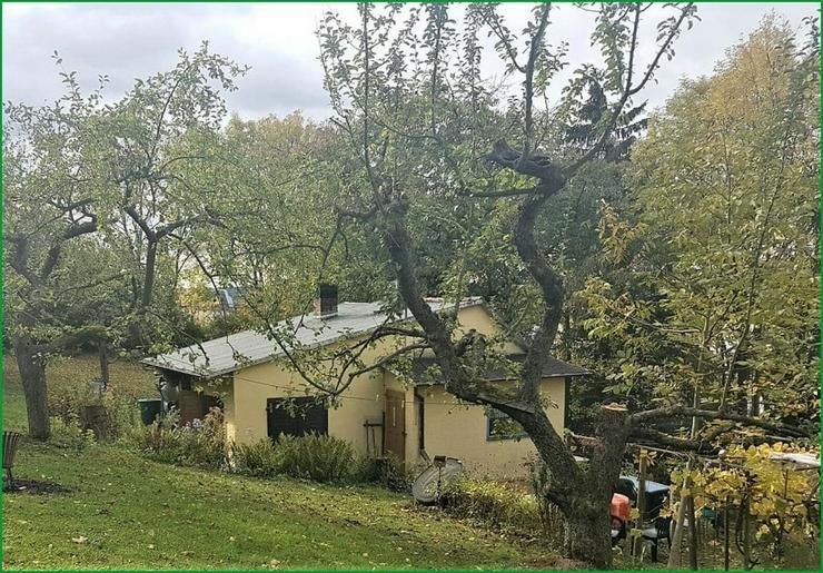 Wochenendgrundstück in Gera in absolut ruher Lage - mit Baumbestand und Streuobswiese....... - Grundstück kaufen - Bild 1