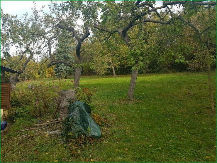 Bild 4: Wochenendgrundstück in Gera in absolut ruher Lage - mit Baumbestand und Streuobswiese.......