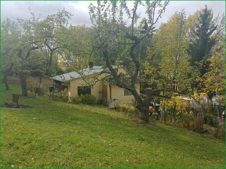 Bild 6: Wochenendgrundstück in Gera in absolut ruher Lage - mit Baumbestand und Streuobswiese.......