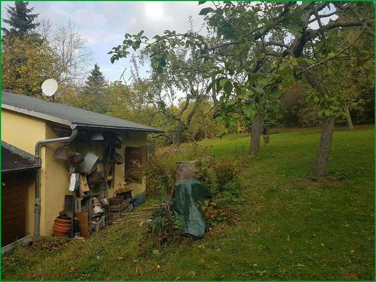 Bild 5: Wochenendgrundstück in Gera in absolut ruher Lage - mit Baumbestand und Streuobswiese.......