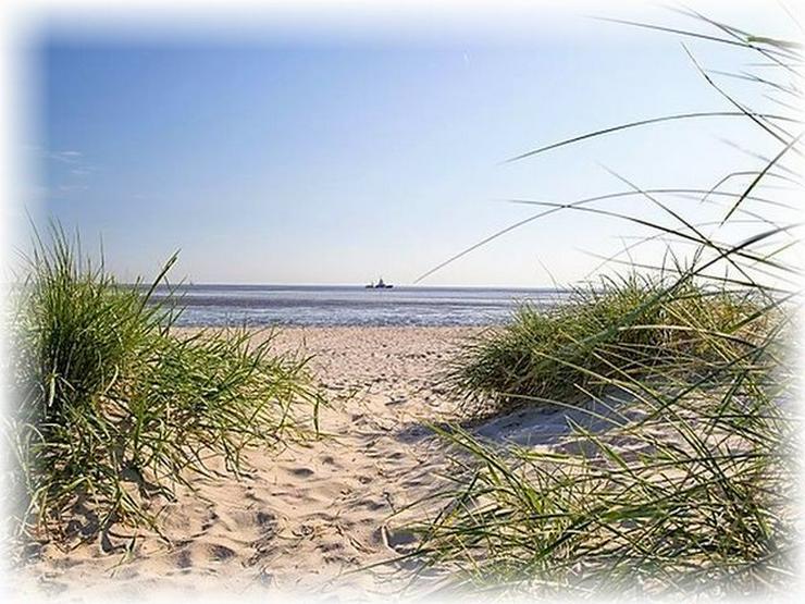 Bild 2: Suche APARTMENT am Meer, CUXHAVEN oder INSEL