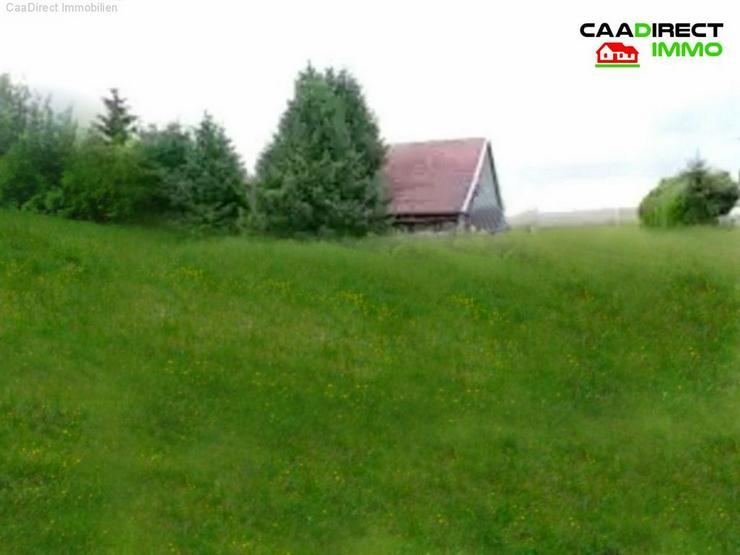 Bild 2: Autentisch erhaltene Farm in Absoluter Alleinlage - 90 Min. von Basel u. Weil am Rhein