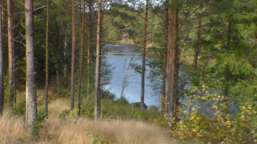 Bild 6: Ferienhaus am Wasser ohne Nachbarn in Schweden