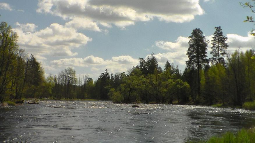 Bild 2: Ferienhaus am Wasser ohne Nachbarn in Schweden