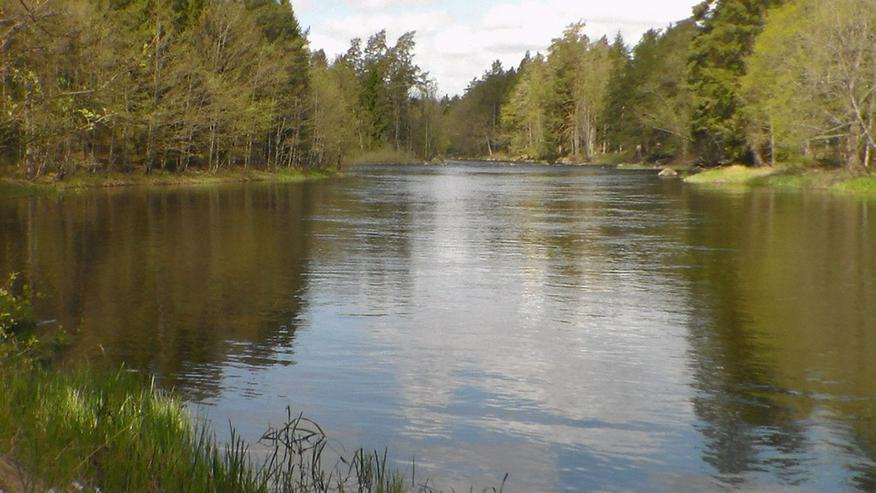 Bild 5: Ferienhaus am Wasser ohne Nachbarn in Schweden