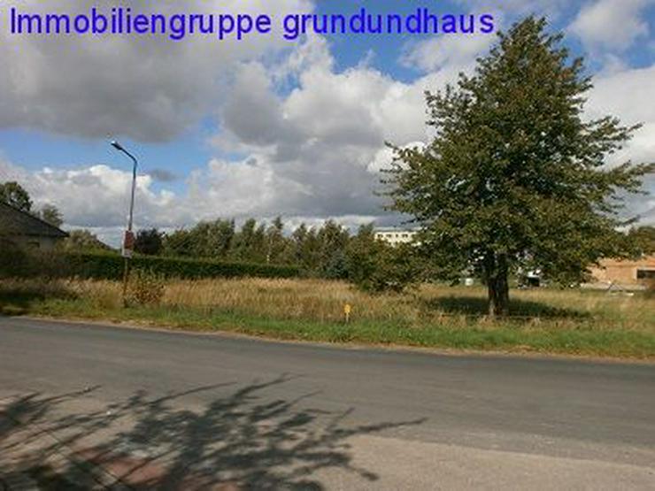 teilbares Baugrundstück unweit Kummerower See und Peene - Grundstück kaufen - Bild 1