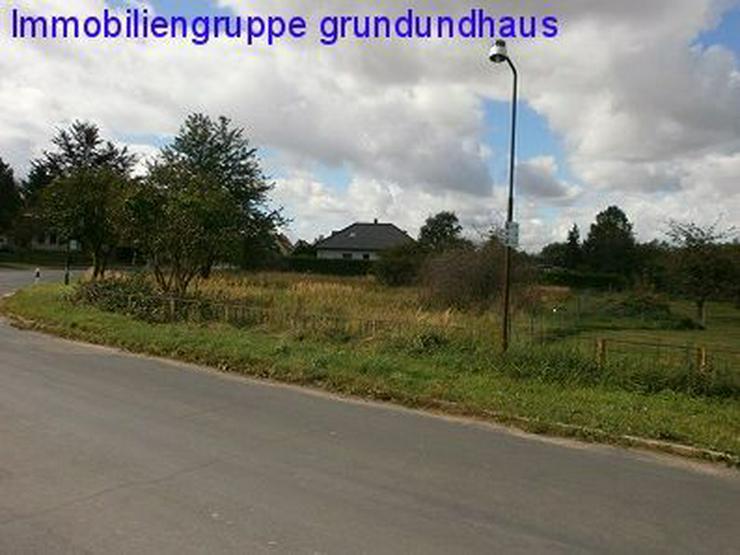Bild 1: nett gelegenes Grundstück unweit Kummerower See und Peene