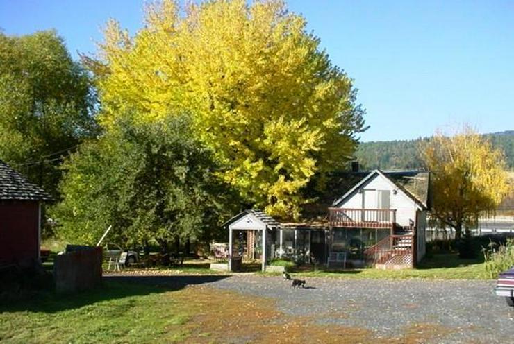 Bild 2: Natur PUR., ca. 10 Hektar Grundstück mit Landhaus mit Fluglandebahn, Scheune und Hangar!
