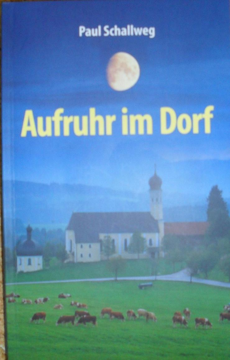 Heimatkrmi + Komik - Romane, Biografien, Sagen usw. - Bild 1