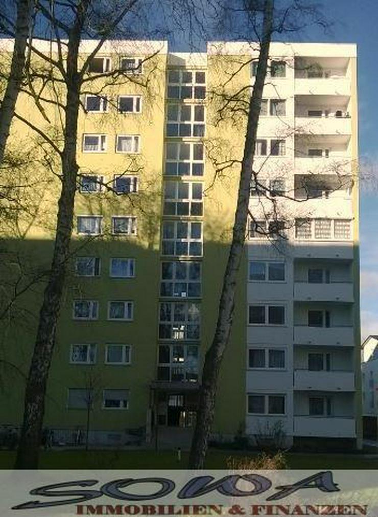 Bild 5: TOP: Frisch renovierte 2 Zimmer Wohnung mit Balkon in Neuburg - sofort Bezug möglich -SOW...