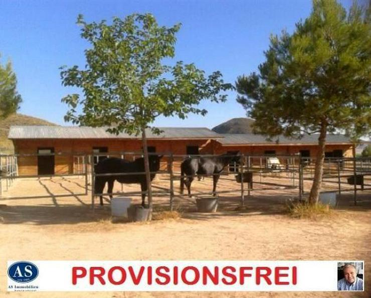 Pferderanch & Schnäppchen , Germany Pferde-Ranch und 2 Häuser auf ca. 138.000 qm Land g?... - Bild 1
