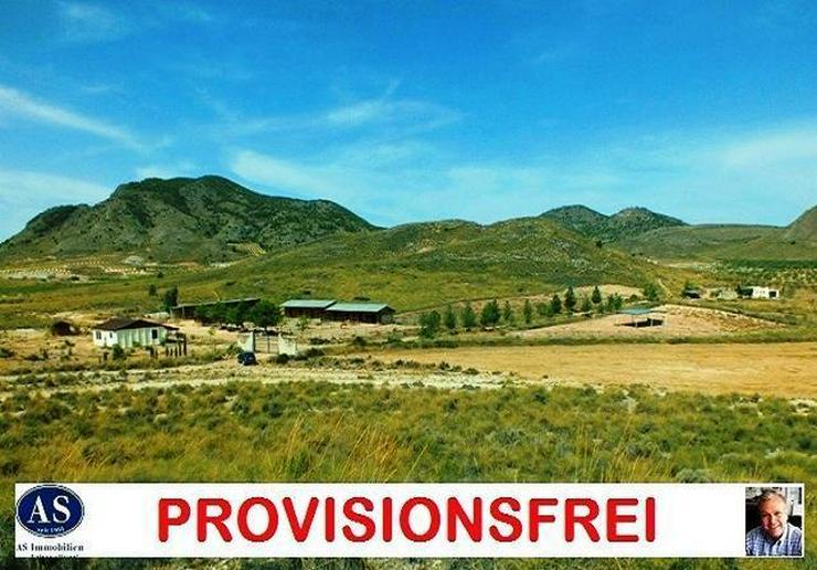 Schnäppchen & Provisionsfrei, ca. 138000 qm Grundstück mit Pferderanch und Häuser provi...