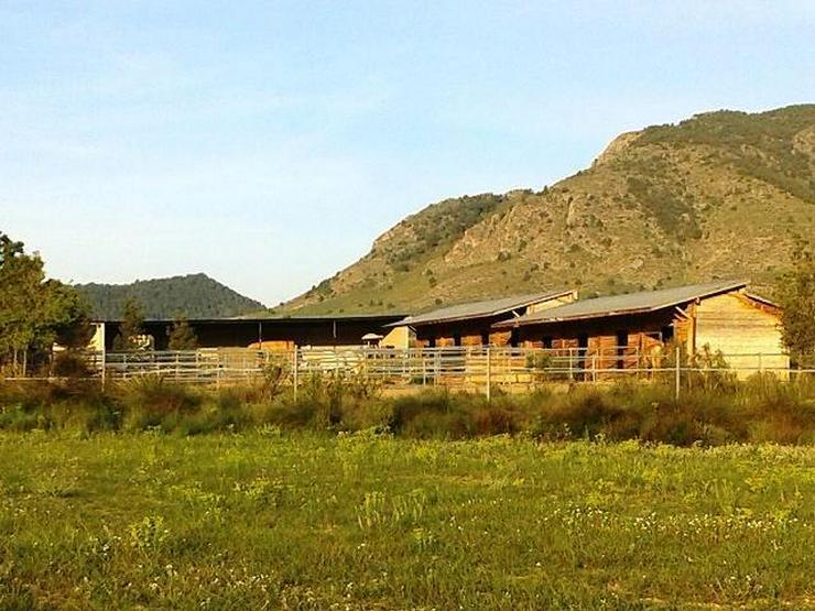 Bild 4: Schnäppchen & Provisionsfrei, ca. 138000 qm Grundstück mit Pferderanch und Häuser provi...