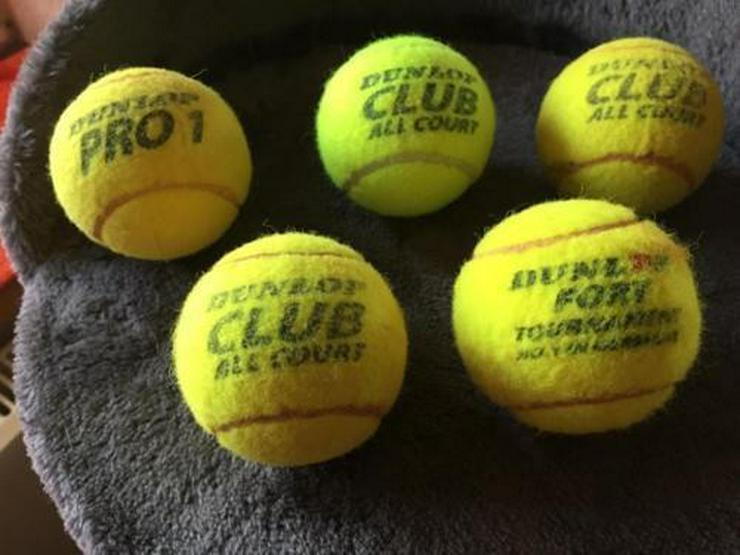 5 gebrauchte Tennisbälle, kostenloser Versand