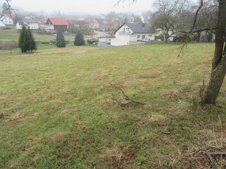 Bild 2: Schön gelegener Bauplatz mit ca. 1199 m² in Limbach OT im Odenwald