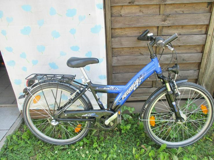 Kinderfahrrad 24 Zoll Pegasus  Versand möglich - Kinderfahrräder - Bild 1