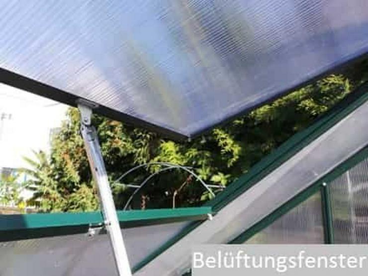 Bild 2: Hochwertiges Gewächshaus Treibhaus ''TOM'' 190x370 Tomatenhaus inkl. Fundament NEU!