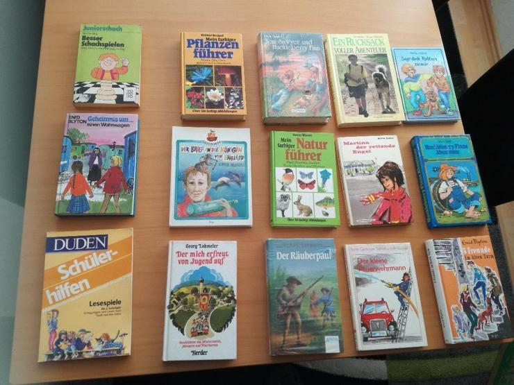 Verschiedene Kinder und Sachbücher