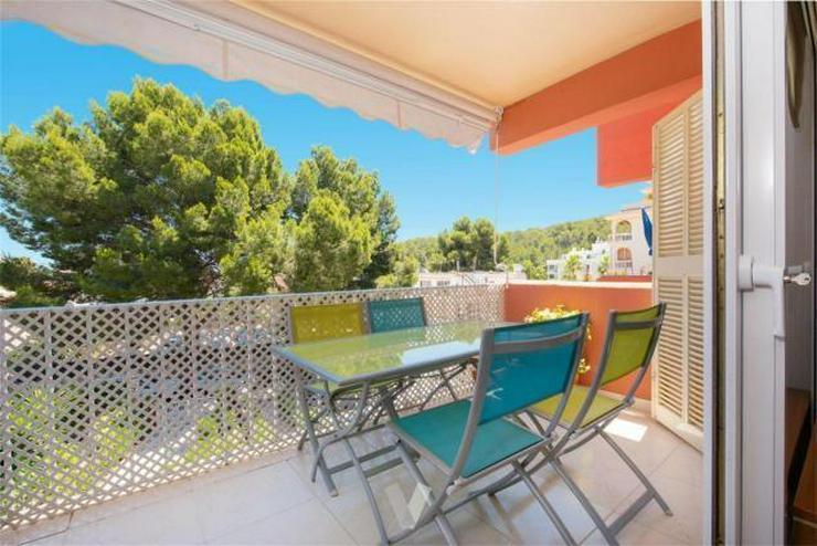 Sehr schönes Apartment in Paguera - Wohnung kaufen - Bild 1
