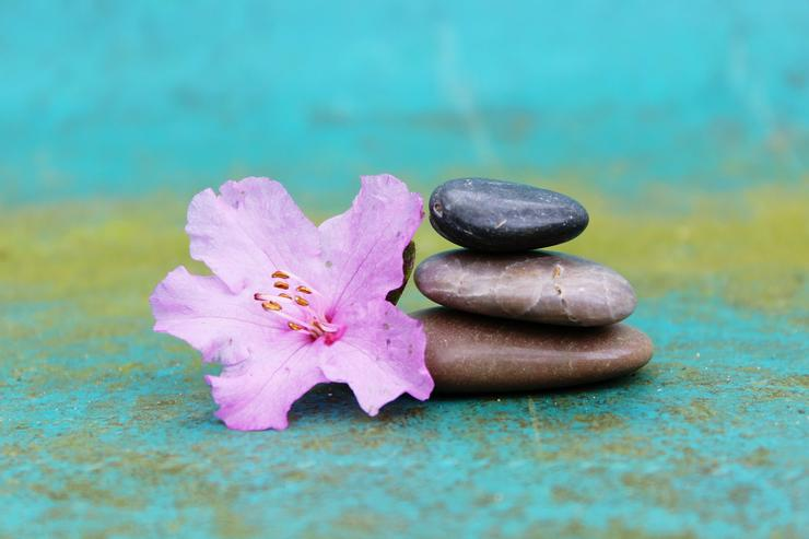 Ausbildung Meditations-Lehrer