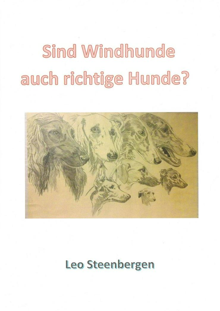 Sind Windhunde auch richtige Hunde?