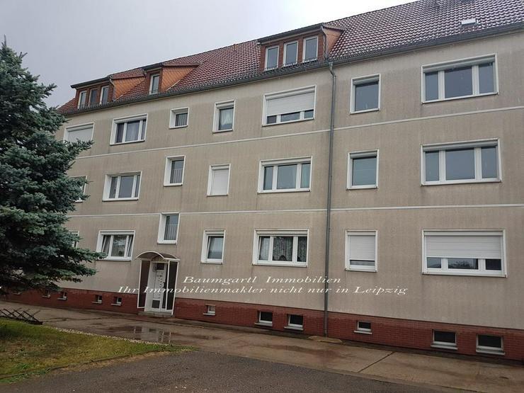 Großzügig geschnittene 4 Zimmerwohnung in Zwochau bei Delitzsch zu vermieten - Wohnung mieten - Bild 1