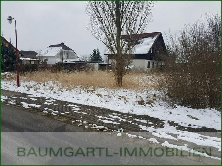 Böhlen bei Grimma - in ruhiger Lage Baugrundstück für ein Einfamilienhaus - Grundstück kaufen - Bild 1