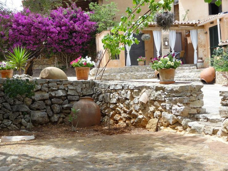 Bild 5: Mallorca-Son Macia, App. Petit der FincaOase