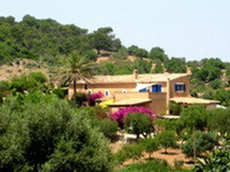 Mallorca-Son Macia, App. Grande der FincaOase